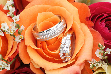 Wedding rings in orange rose