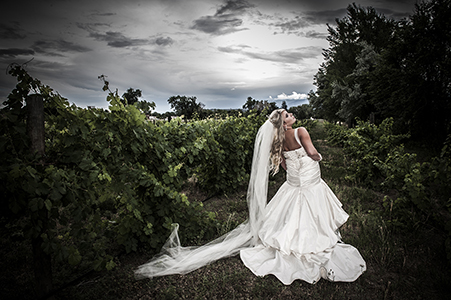 Shannon in wedding gown at Abby grapevines