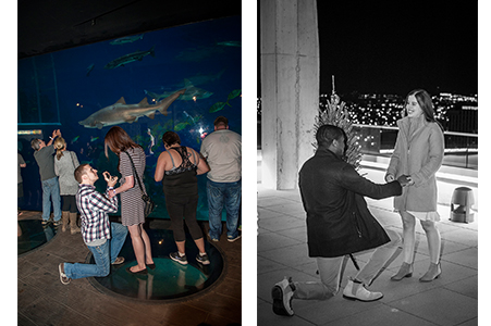 2 images of engagements on a rooftop and in an aquarium